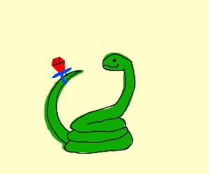 Snake finds an abandoned Ring Pop
