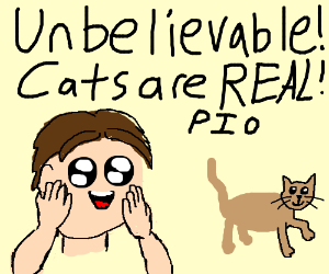 Unbelievable!! Cats are real! P.I.O