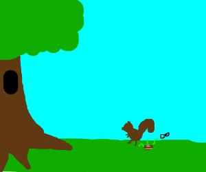 A squirrel takes a dump