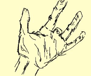 4-fingered hand