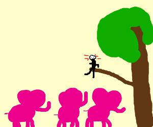 Im high n I see 3 pink elephants