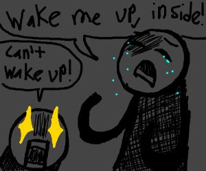 wAKE ME UP INSIDE