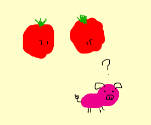 giant hovering tomatoes inspect clueless pig