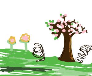 Springs in Spring