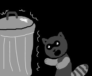 racoon wants silver trashcan