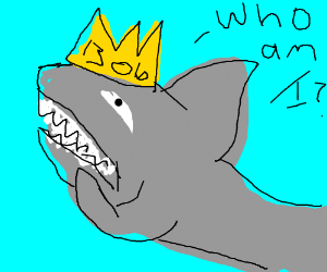 King Bob: the shark with an identity crisis