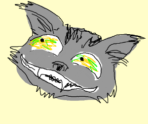 Psychotic cat