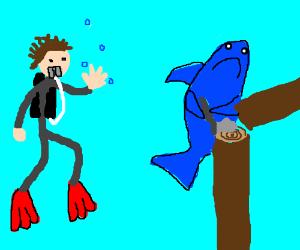 Scuba diver meets lumberjack shark mid-timber