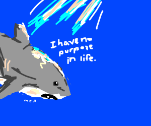 A shark having an existential crisis.