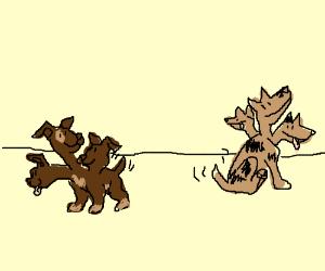 Two small Cerberus puppies