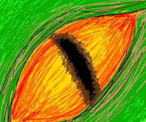 Yellow/orange eye, possibly dragon or somethin