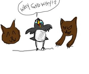 Snowbird Hell