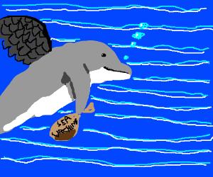 Dark-angel-dolphin of the sea mugs sea urchin