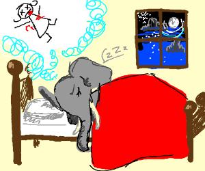elephant dreams of a dead woman