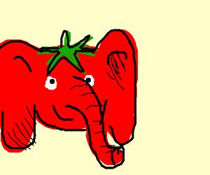 Elephant Tomato