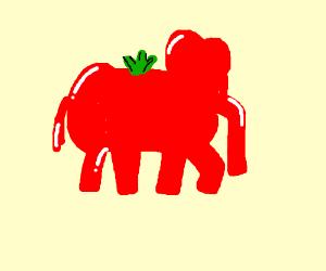 an elephant tomato