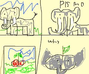 Elephant turns into a cherry