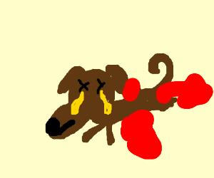 Custard Dripping From A Dead Dog S Eye