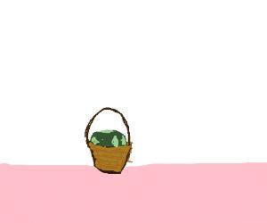 Earth in a basket