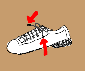 The Question explains what an aglet is