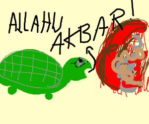 ISIS turtle
