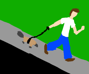 taking the platypus out for a walk