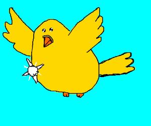 Shiny bird in the sky