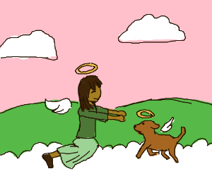 Girl meets her dog in Heaven