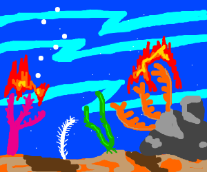 Coral under the ocean is on fire somehow