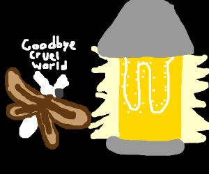 Bug Suicide