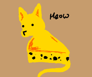 Cheese cat