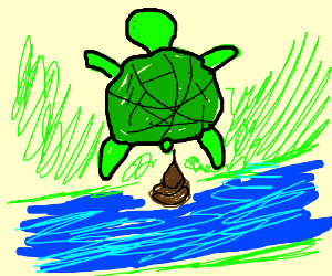 turtle pooping in river