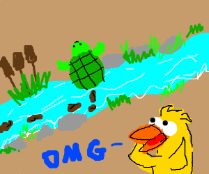 Turtle poos in a river, duck is surprised