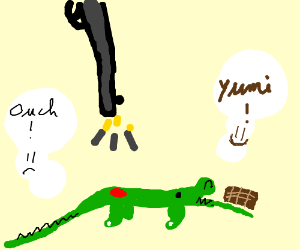 Crocodile Scaly getting shot while eating choc