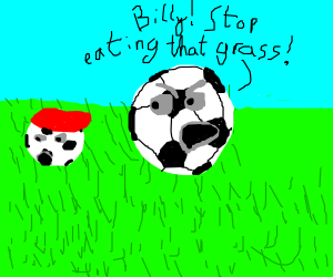 a soccer ball eats grass and is scolded for it