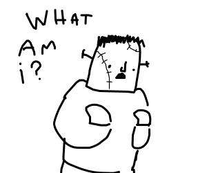 Frankenstein's monstor wonders what he is