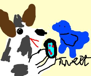 Persisntent cow tweets.