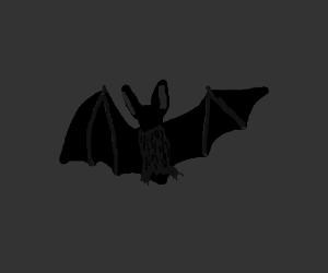 A bat in the dark.