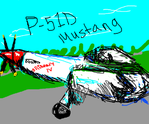 P-51D Mustang (look up if needed)