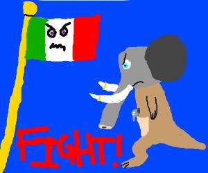 Italy flag vs. elephant kangaroo.