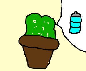 Potted plant needs water