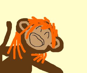 Are orange monkeys ass