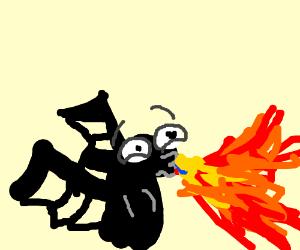 Cute black dragon breaths fire.