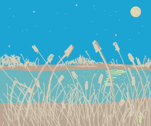 lake/marsh with cattails at night