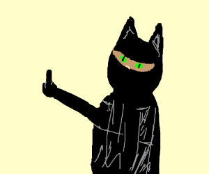 ninja cat middlefinger