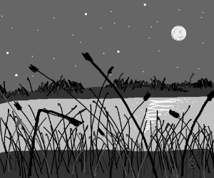 Reeds by a moonlit lake