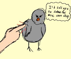Birds annoyed by someone poking them