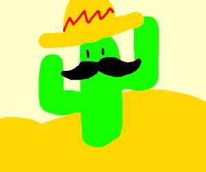 A cactus wearing a sombrero