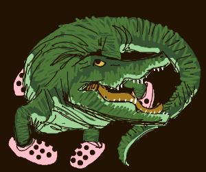 Crocodile wearing Crocs