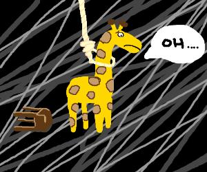 Giraffe commits suicide via noose